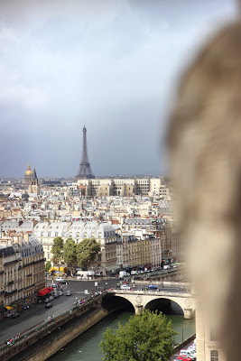 La Tour Eiffel da Notre Dame Parigi