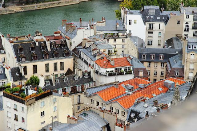 I tetti di Parigi da Notre Dame