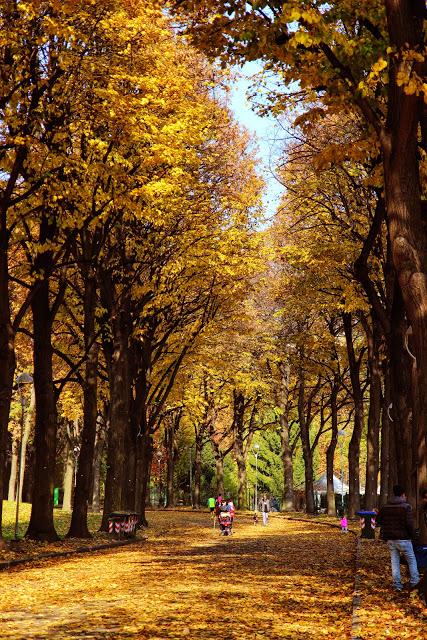 L'ingresso del Parco della Pellerina a Torino in autunno