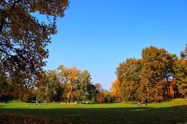 Prato autunnale al parco della Pellerina di Torino