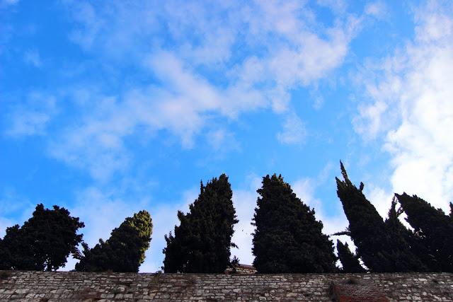 Cielo e Alberi al Castello di Brescia